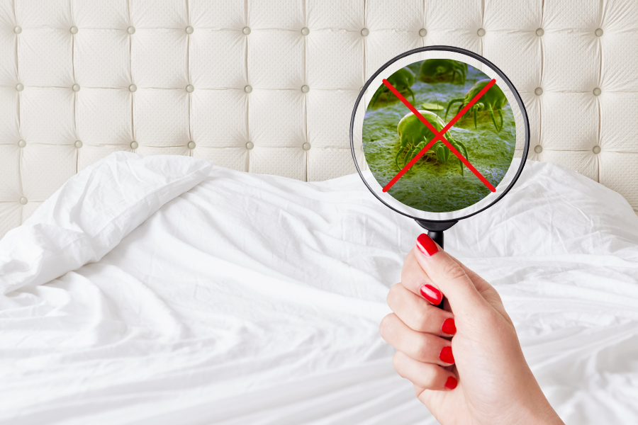 SHOCKING MATTRESS HEALTH FACTS THAT YOU PROBABLY DON'T WANT TO KNOW BUT REALLY SHOULD